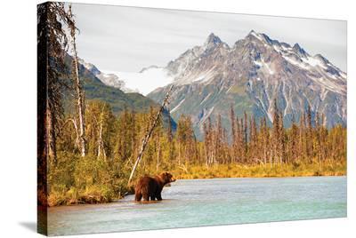 Natural Splendors Alaska IV--Stretched Canvas Print