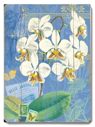 Natural Wonders-White Orchid--Wood Sign