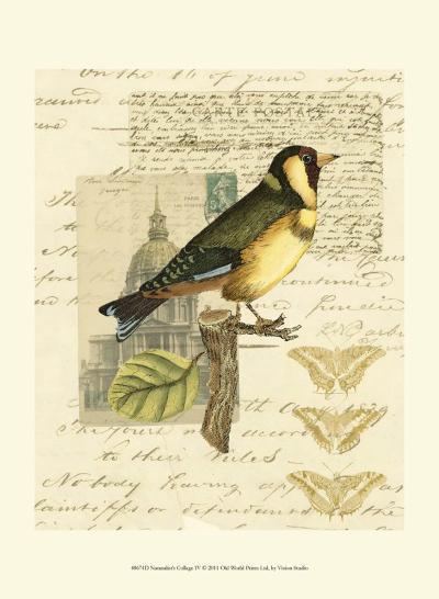 Naturalist's Collage IV--Art Print