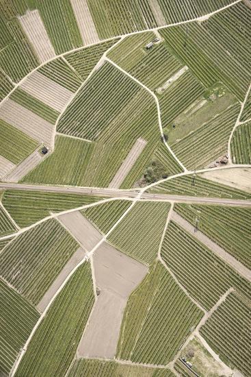 Nature, Landscape, Val Sulgana, Railway, Aerial Shot, Meadow, Fields, Way, Wine-Growing, Summer-Frank Fleischmann-Photographic Print
