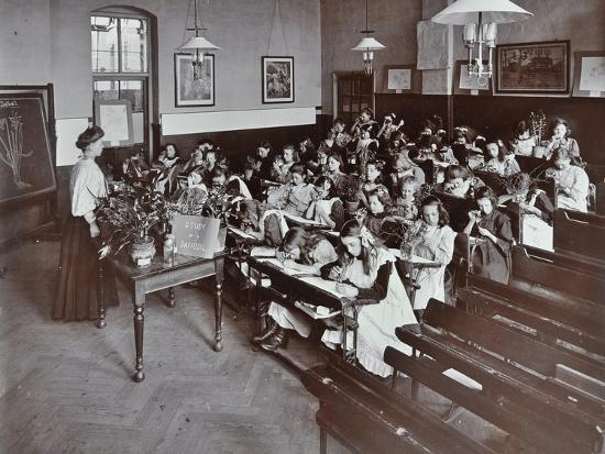 Nature lesson, Albion Street Girls School, Rotherhithe, London, 1908-Unknown-Photographic Print