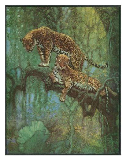 Nature Magazine - Two Leopards in a Tree, c.1932-Lantern Press-Art Print
