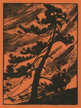 https://imgc.artprintimages.com/img/print/nature-magazine-view-of-a-tree-being-thrashed-in-a-wind-storm-c-1940_u-l-q1gorsw0.jpg?p=0