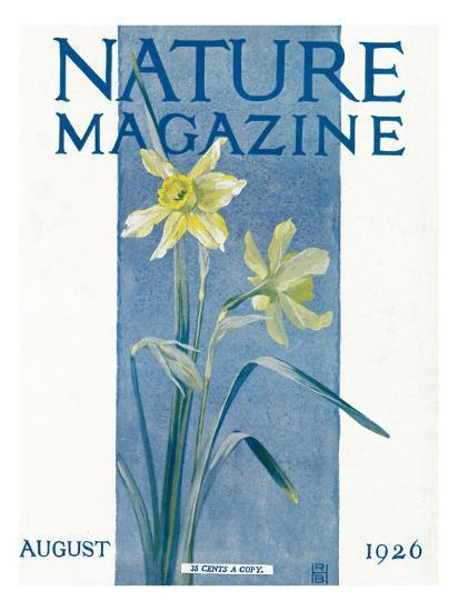 Nature Magazine - View of Blooming Daffodils, c.1926-Lantern Press-Art Print