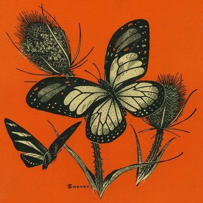 https://imgc.artprintimages.com/img/print/nature-magazine-view-of-butterflies-on-thistles-c-1949_u-l-q1gosuy0.jpg?p=0