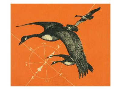 Nature Magazine - View of Canadian Geese Flying South, c.1949-Lantern Press-Art Print