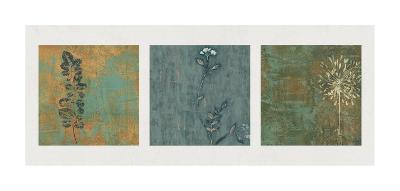 Nature Path-Chris Donovan-Giclee Print