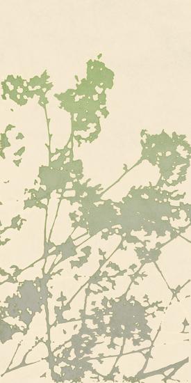 Nature Ramble-Sarah Cheyne-Giclee Print