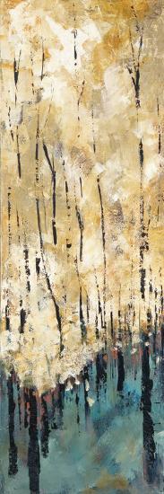 Nature's Abundance I-Luis Solis-Art Print