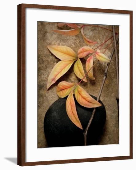 Nature's Balance-Julie Greenwood-Framed Premium Giclee Print