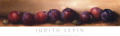 Nature's Bounty I-Judith Levin-Art Print