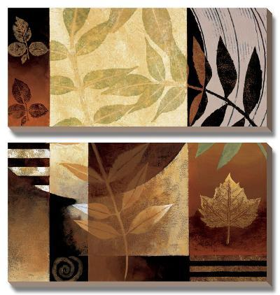 Nature's Elements II-Keith Mallett-Canvas Art Set
