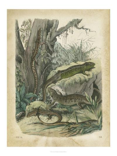 Nature's Gathering V-John Wiek-Art Print