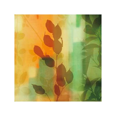 Nature's Glow II-Chris Donovan-Giclee Print