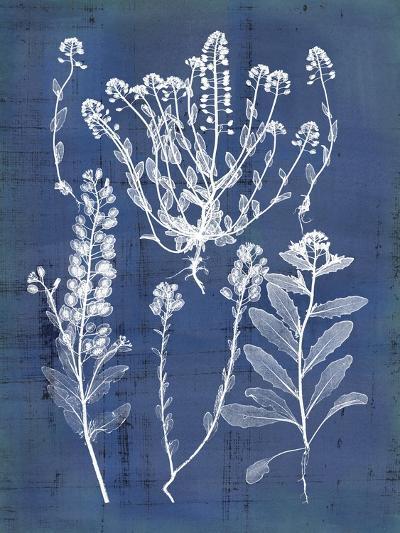 Nature's Imprint III-Vision Studio-Art Print