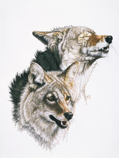 Nature's Minstral-Barbara Keith-Giclee Print