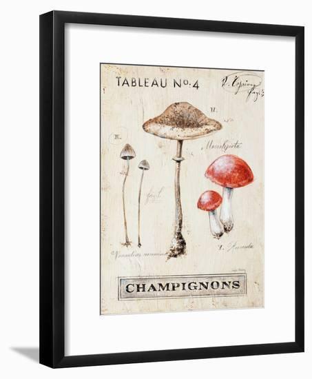 Nature's Mushrooms-Angela Staehling-Framed Art Print