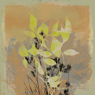 Natures Harmony III-Ken Hurd-Giclee Print