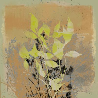 https://imgc.artprintimages.com/img/print/natures-harmony-iii_u-l-f649gt0.jpg?p=0
