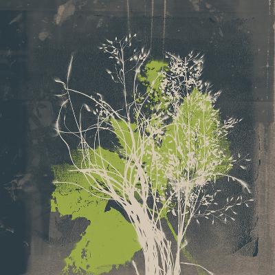 Natures Harmony VII-Ken Hurd-Giclee Print