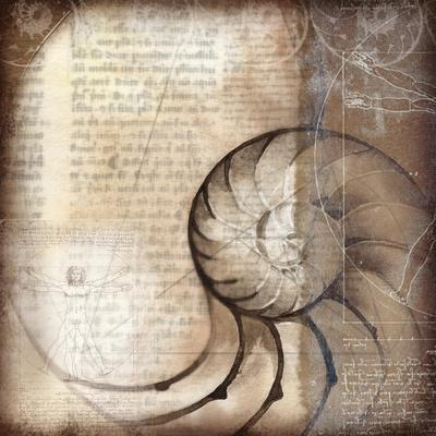 Nautalis I-Kory Fluckiger-Giclee Print