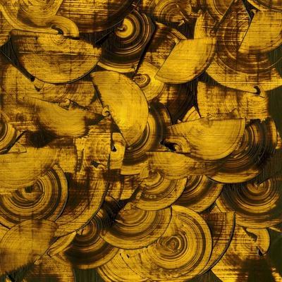 https://imgc.artprintimages.com/img/print/nautilus-in-gold-ii_u-l-q1bfa030.jpg?p=0