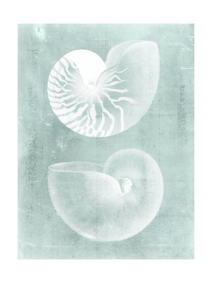 Nautilus on Spa I-Vision Studio-Art Print