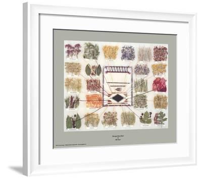 Navajo Dye Chart-Ella Myers-Framed Art Print