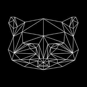 Black Raccoon Polygon by NaxArt