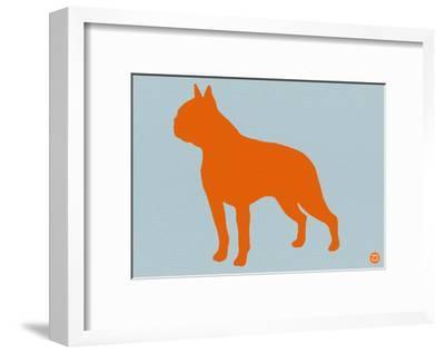 Boston Terrier Orange