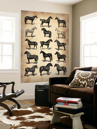 Vintage Horses Collection