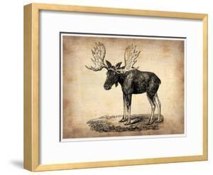 Vintage Moose by NaxArt