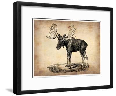 Vintage Moose