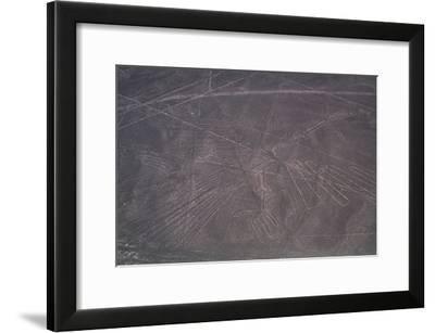 Nazca Lines-David Nunuk-Framed Photographic Print