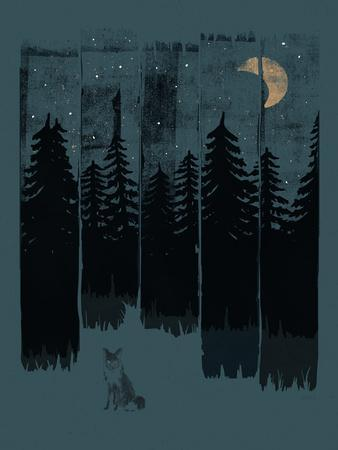 Fox In The Wild Night Rectangle3