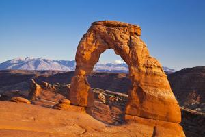 Delicate Arch, Arches National Park, Near Moab, Utah, United States of America, North America by Neale Clark