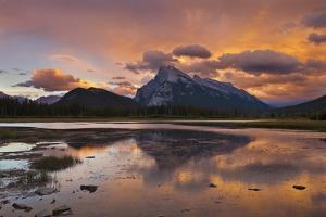 Mount Rundle Rising Above Vermillion Lakes Drive at Sunset by Neale Clark