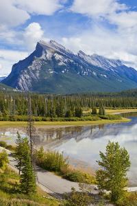 Mount Rundle Rising Above Vermillion Lakes Drive by Neale Clark