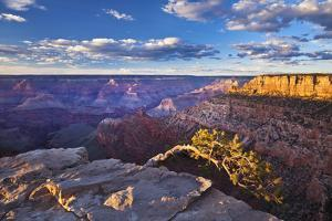 Pipe Creek Vista Point Overlook, South Rim, Grand Canyon Nat'l Park, UNESCO Site, Arizona, USA by Neale Clark