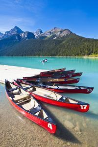 Red Canoes for Hire by Neale Clark