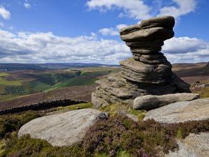 Salt Cellar Rock, Derwent Edge, with Purple Heather Moorland, Peak District National Park, Derbyshi by Neale Clark