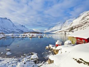 Snow Covered Mountains, Boathouse and Moorings in Norwegian Fjord Village of Ersfjord, Kvaloya Isla by Neale Clark