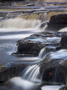 Lower Aysgarth Falls Near Hawes, Wensleydale, Yorkshire Dales National Park, Yorkshire, England, UK by Neale Clarke