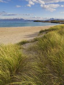 Sand Dunes and Dune Grasses of Mellon Udrigle Beach, Wester Ross, North West Scotland by Neale Clarke