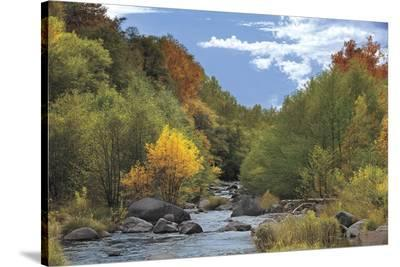 Near Perfect Day-Mike Jones-Stretched Canvas Print