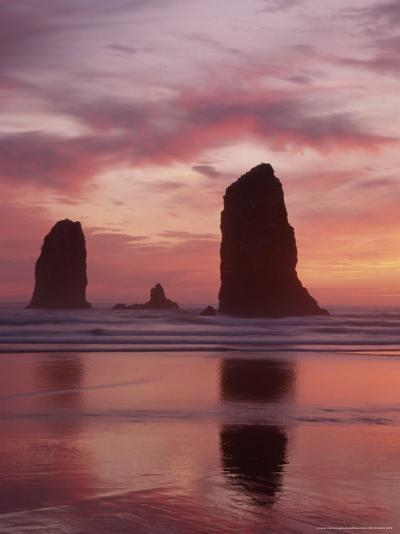 Needles at Sunset along the Coastline, Cannon Beach, Oregon, USA-Darrell Gulin-Photographic Print