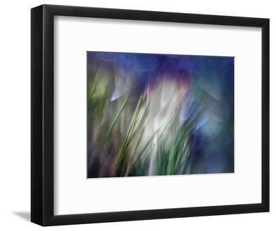 Needles-Ursula Abresch-Framed Photographic Print