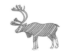 Animals Caribou by Neeti Goswami