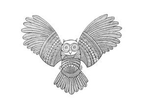 Bird Owl 3 by Neeti Goswami
