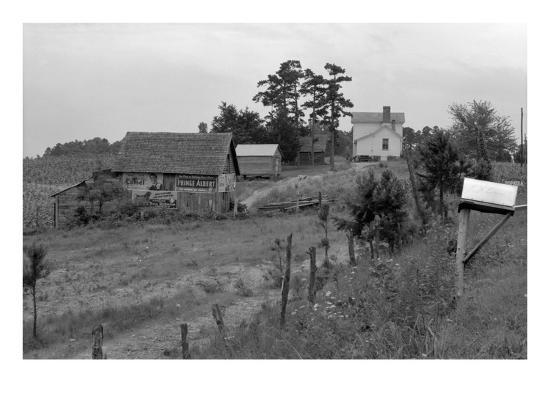 Negro Sharecropper Farm-Dorothea Lange-Art Print